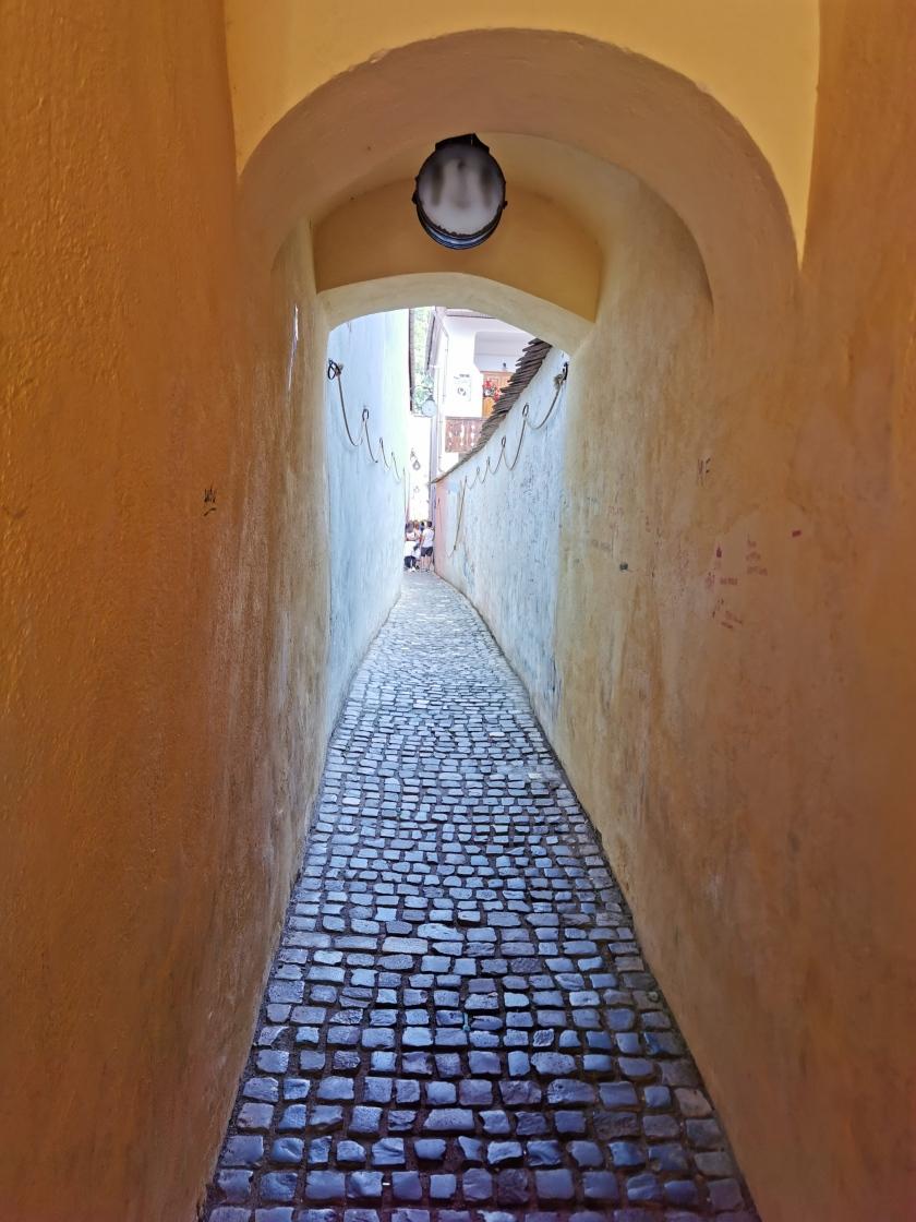 הרחוב הצר